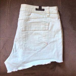 Mint Colored LC Lauren Conrad Shorts